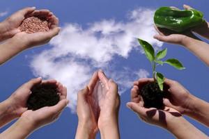 فعالیت ها مشمول معافیت کشاورزی